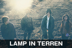 LAMP IN TERREN